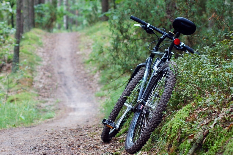 Controlling-erosion-on-a-well-used-bike-trail-case-study2.jpg