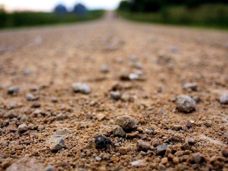 Better Solutions for Unpaved Roads