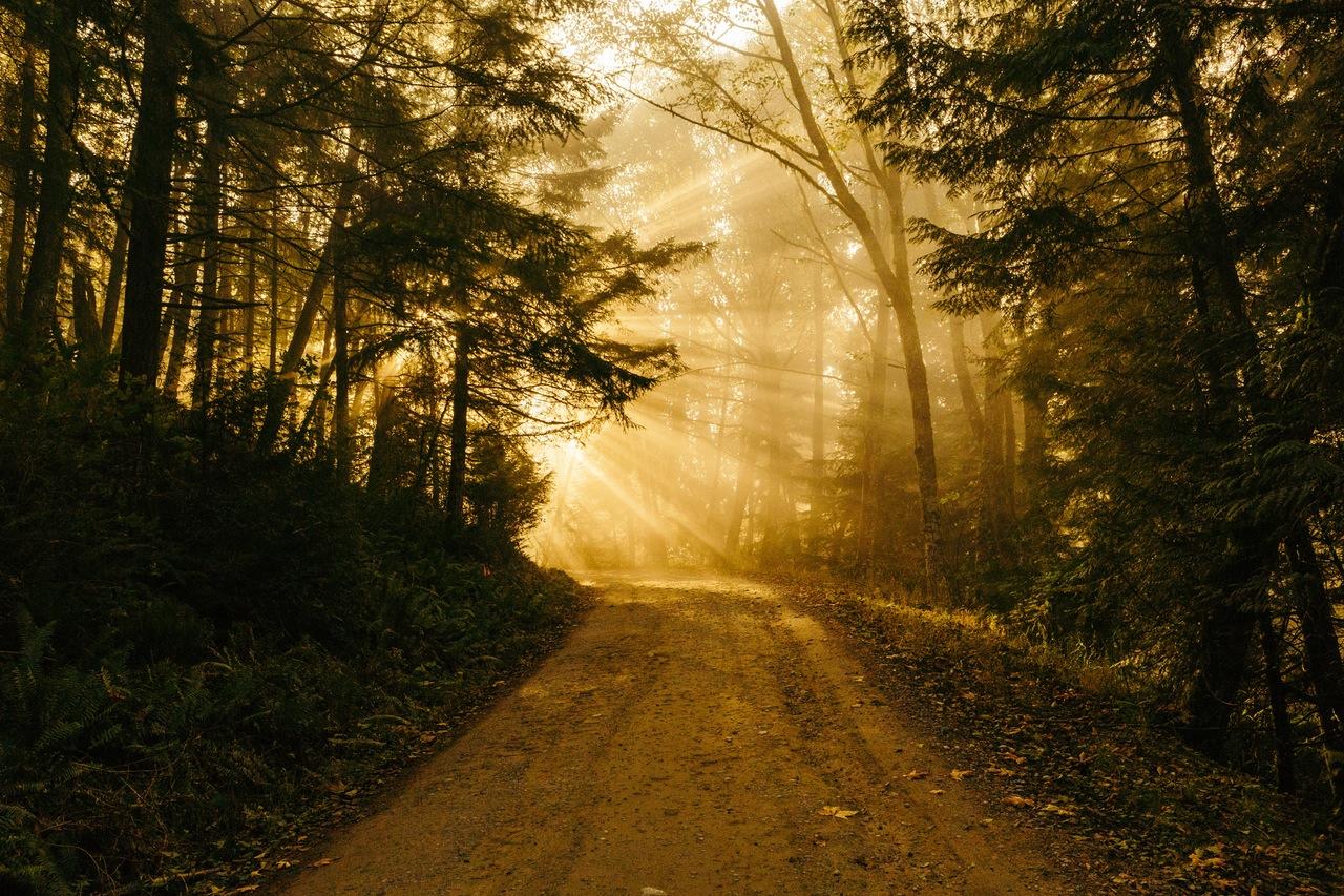 eco-unpaved-road.jpg