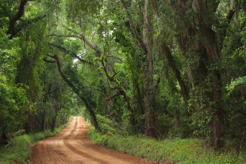 How Should Your Rural Community or Village Manage Its Unpaved Roads