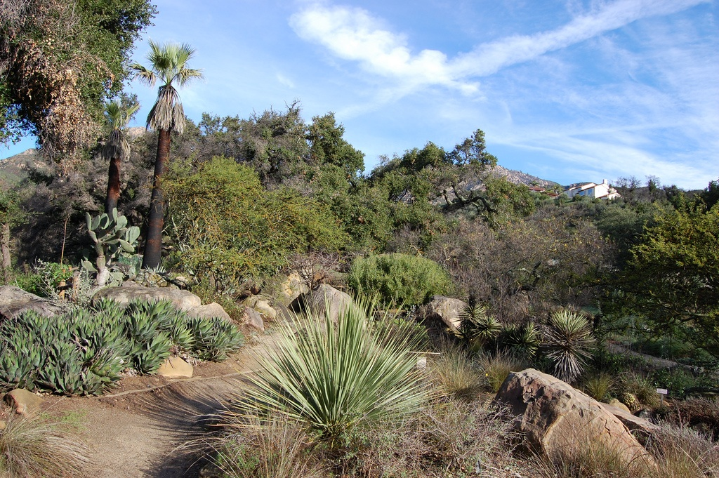 Porous Pave Solution from Midwest Gives Santa Barbara Botanic Garden a More Natural Look