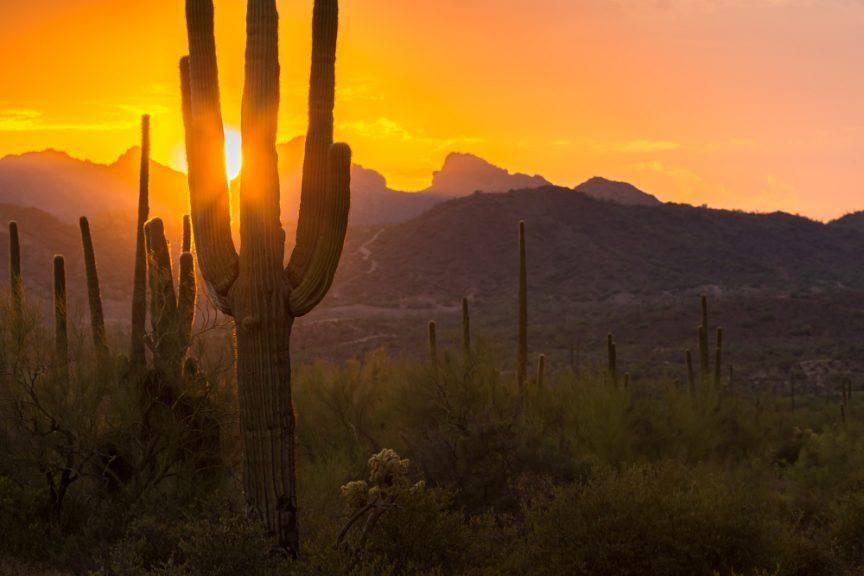 unpaved-roads-tucson-arizona-dust-control